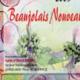 Beaujolais Durand, Beaujolais Villages Nouveau