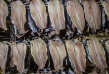 Etablissements j.c.david salaison de la mer