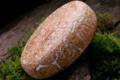 fromagerie du Pic, Le Brebis du Pic