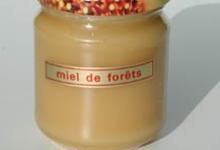 Apiland, Miel de Forêt
