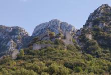 Château Romanin