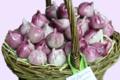 Pâtisserie Argiolas, Les figuettes de Provence
