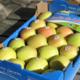 Atout Pom, pommes de Savoie