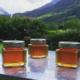 Confidences d'abeilles