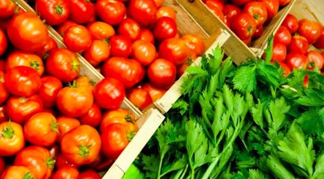 Gaec le bouquet Savoyard, tomates bio