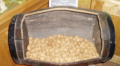 la ferme des Valnoix, noix de Savoie