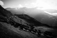 Ferme De Lognan, la ferme des Capucines