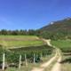 Vins Perret, Domaine Saint-Romain