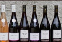 domaine Chevallier Bernard, Jongieux Rouge - Pinot
