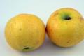 CSV Fruits