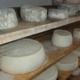 """fromages de l'Alpage """"Les Chappes"""""""