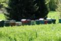 Chantal et Alain Rabaud, apiculteurs