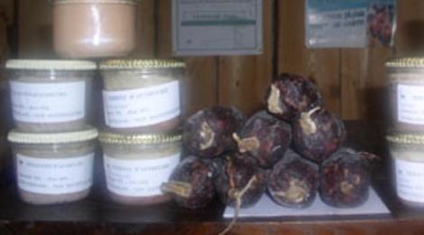 Autrucheland, terrine d'autruche au poivre vert