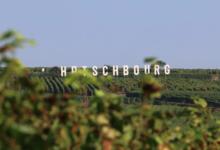 La cave des vignerons de Pfaffenheim