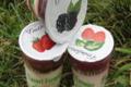 Yaourts fermiers au fruits