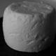 Ferme des Cathelins , chèvre cendré, brebis frais