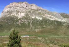 GAEC des Coulours, alpage Favre