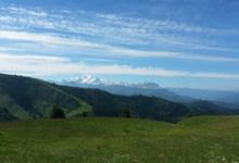 GAEC Le Mont Caly