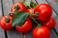 Le panier des singeons, tomates