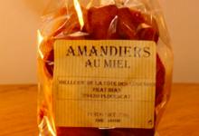 Miellerie de Plouescat, amandiers au miel