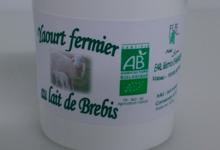 Natur'Agneau, yaourt fermier au lait de brebis