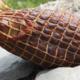 Le Tuyé du Papy Gaby, noix de jambon fumée