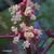 Ricin-inflorescence