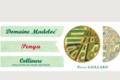 "Domaine Madeloc, collioure blanc ""Penya"""