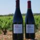 Mas Parayre, Olivier Romeu, vin de pays des Côtes Catalanes