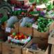 Mas Parayre, Olivier Romeu, fruits et légumes