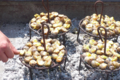 L'escargot Thuirinois, escargots à la catalane