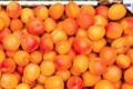 Domaine St Thomas, abricots