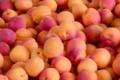 La Fontaine Rouge, abricots