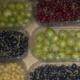 Baies Fruitet, cassis