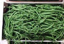 Saveurs des Pampas, haricots verts