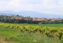 Mas Pujol, Domaine la Rourède