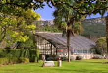 Château Haut-Gléon