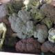 Mas dels Miquels, brocoli