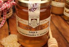 Miel Rayon d'or, miel de clémentinier