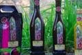 Le moulin de Llevant, huile d'olive de variété Olivière et Redouneil en fruité vert