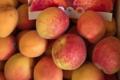 Amethyste-fruits, abricots rouges du Roussillon