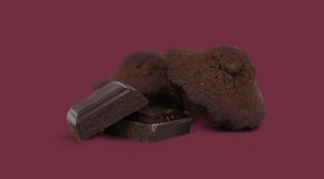 Biscuiterie Jeannette 1850, Theobroma - madeleine chocolat