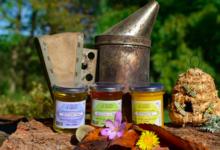 Le rucher de Cadarcet, Miel des Pyrénées