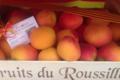 L'abricotine, abricots du Roussillon