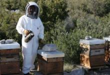 Jean-Marie Monier, apiculteur