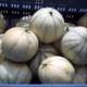 Les Jardins De La Cabane, melons