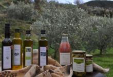 Earl Des Pyrénées, olives Lucques