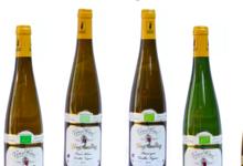 Domaine Yves Amberg, Pinot gris vieilles vignes