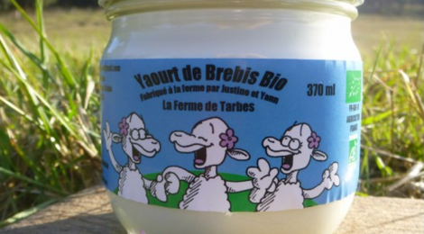La ferme de Tarbes,  Petit Yaourt de Brebis Bio