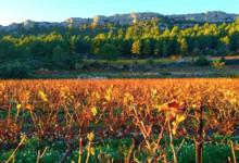 Domaine de la Bouysse